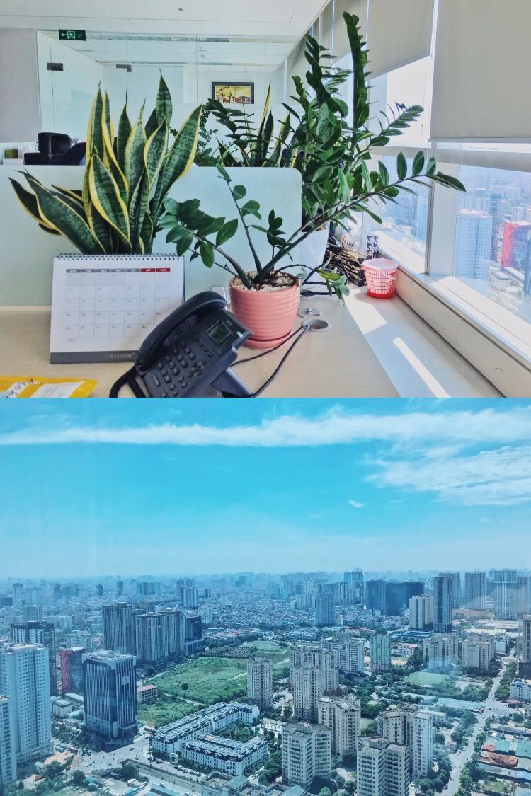 Jobs at VPĐD Hikvision Singapore Pte. LTD. Tại TP.HCM