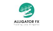 Jobs Alligatorfx recruitment