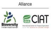 The Alliance of Bioversity International and The International Center For Tropical Agriculture (CIAT) tuyển dụng - Tìm việc mới nhất, lương thưởng hấp dẫn.